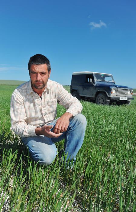 Ben Taylor, Wheat Farmer,  Iford Farm, Lewes, East Sussex - BN7 3EU