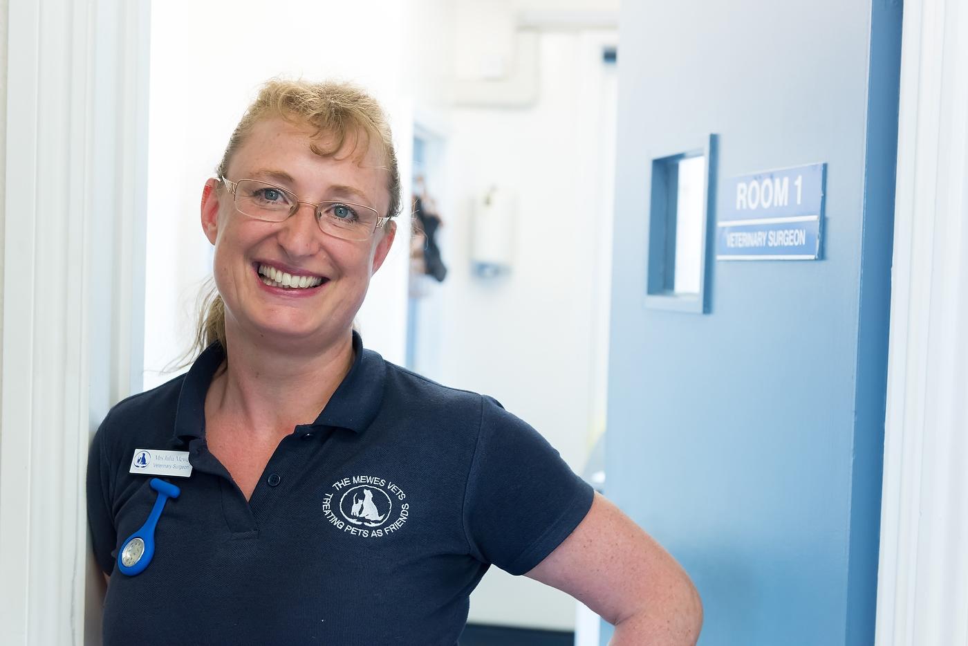 Mewes Vetinary Clinic, Haywards Heath, 2015